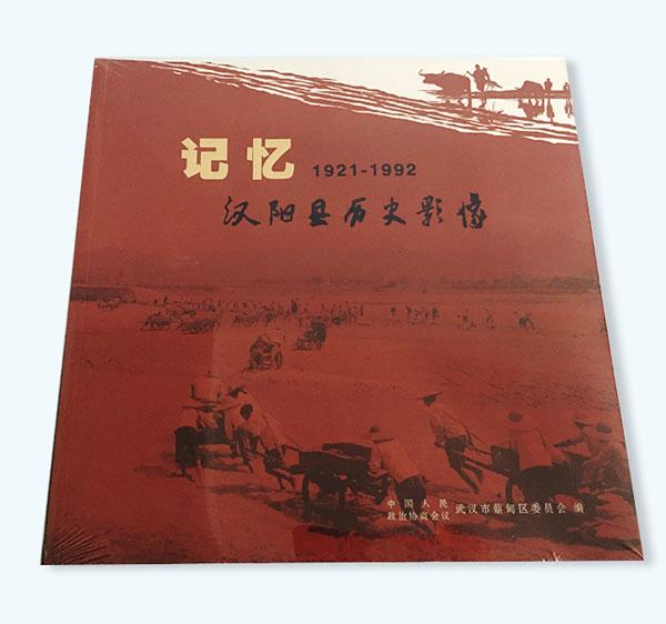 汉阳历史影像